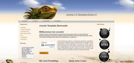 iguana002