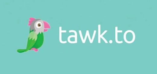 tawkto atendimento online